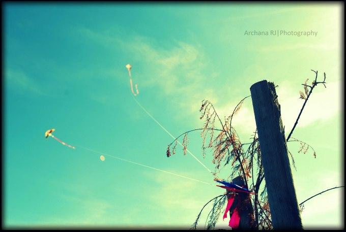 Tree Flying Kite
