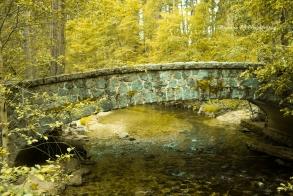 A nice bridge in Yosemite
