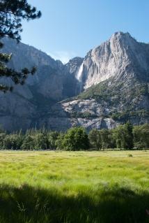 Yosemite (Portrait)